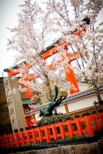 Entrada al Fushimi Inari