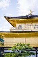 Kinkaku-ji paredes