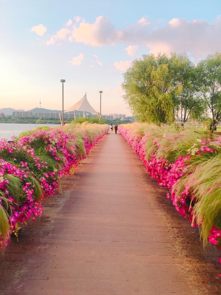 Paseo junto al río Han